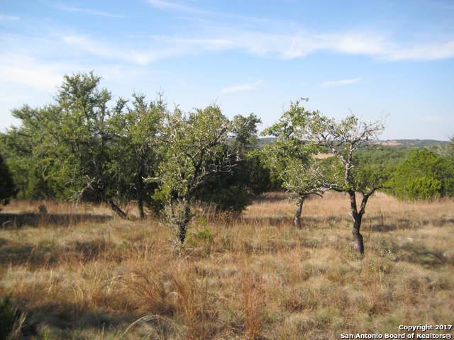 850 Primrose Path, Canyon Lake, TX 78133 (MLS #1277365) :: Magnolia Realty