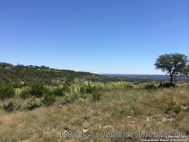 0 BRUSHY TOP TR Brushy Top Trail, Blanco, TX 78606 (MLS #1278017) :: Ultimate Real Estate Services