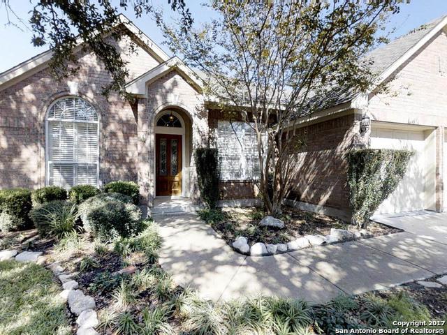 1015 Crystal Spring, San Antonio, TX 78258 (MLS #1278279) :: Alexis Weigand Group