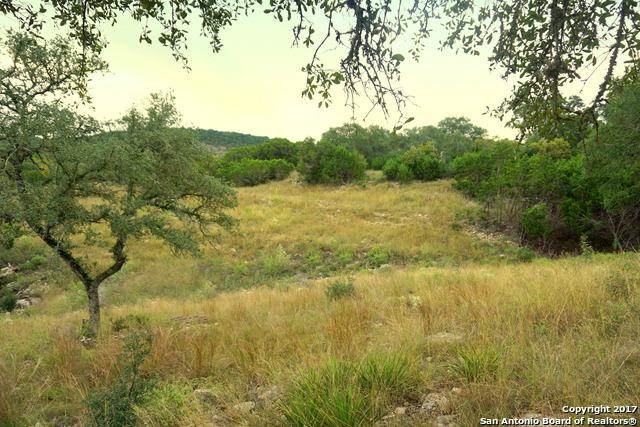 330 Sheridan Dr, Canyon Lake, TX 78133 (MLS #1278970) :: Erin Caraway Group