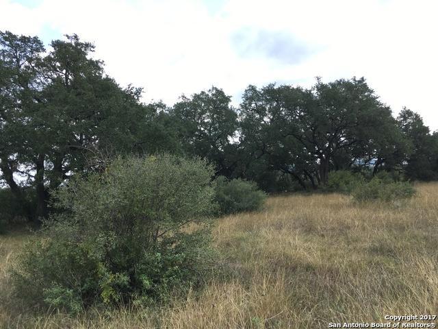 2053 San Jose Way, Canyon Lake, TX 78133 (MLS #1279302) :: Magnolia Realty