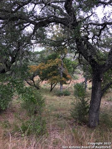 LOT K10163 Buzzards Roost, Horseshoe Bay, TX 78657 (MLS #1279830) :: Alexis Weigand Real Estate Group