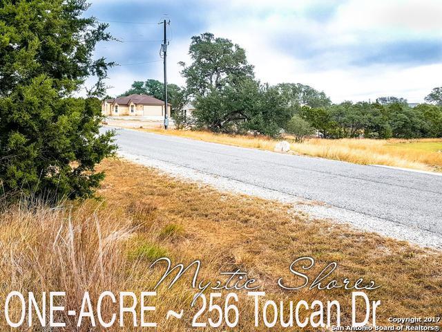 256 Toucan Dr, Spring Branch, TX 78070 (MLS #1280004) :: Exquisite Properties, LLC