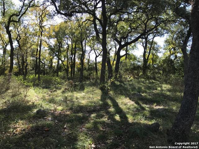 824 Shady Holw, New Braunfels, TX 78132 (MLS #1280076) :: The Suzanne Kuntz Real Estate Team