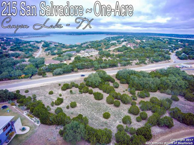 215 San Salvadore, Canyon Lake, TX 78133 (MLS #1280162) :: Alexis Weigand Real Estate Group