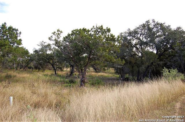 2517 Otter Way, New Braunfels, TX 78132 (MLS #1280933) :: Erin Caraway Group