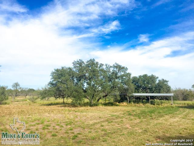 12060 N State Highway 16, Poteet, TX 78065 (MLS #1281094) :: Tami Price Properties Group