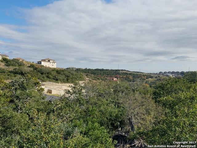 17554 Rancho Diana, San Antonio, TX 78255 (MLS #1281296) :: Erin Caraway Group