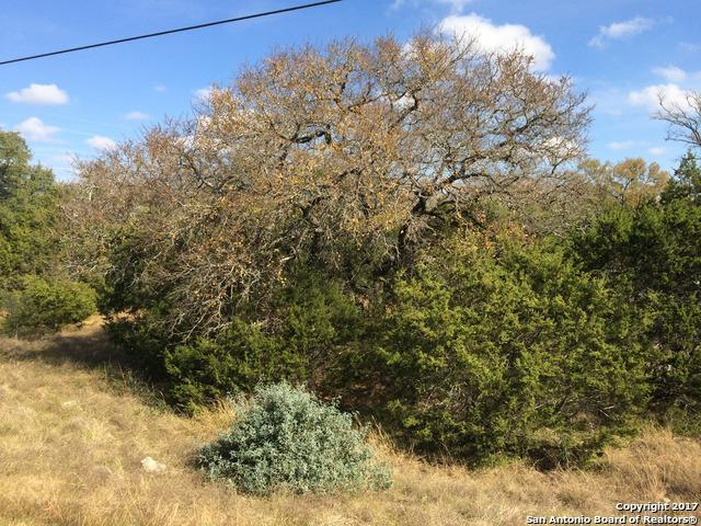 424 Lets Roll Dr, Fischer, TX 78623 (MLS #1281796) :: Magnolia Realty