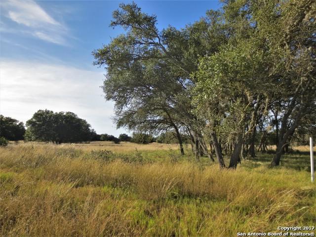 LOTS 461 & 462 Horseshoe Fls, Bandera, TX 78003 (MLS #1281872) :: Magnolia Realty