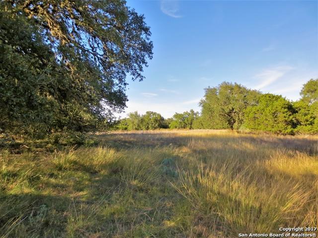 LOT 131 Palomino Spgs, Bandera, TX 78003 (MLS #1281874) :: Magnolia Realty