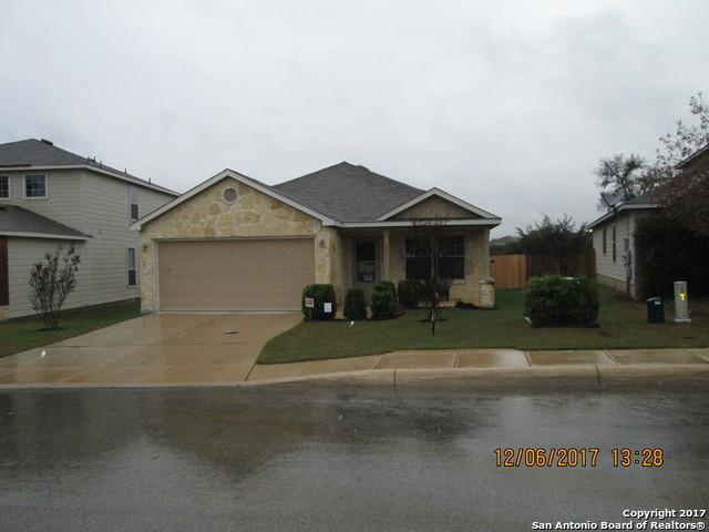 3511 Carruthers Oak, San Antonio, TX 78261 (MLS #1282111) :: ForSaleSanAntonioHomes.com
