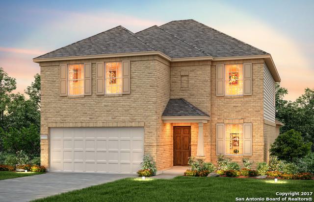 1419 Polydora, San Antonio, TX 78245 (MLS #1282114) :: Exquisite Properties, LLC