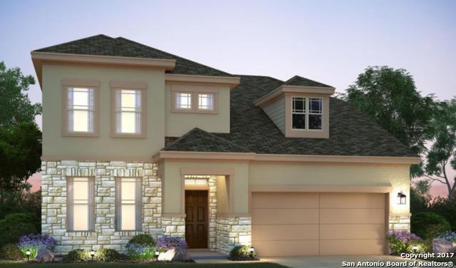 16319 Lantana Point, San Antonio, TX 78247 (MLS #1282225) :: The Castillo Group