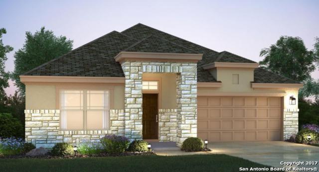 6114 Rio Piedra Drive, San Antonio, TX 78247 (MLS #1282300) :: The Castillo Group