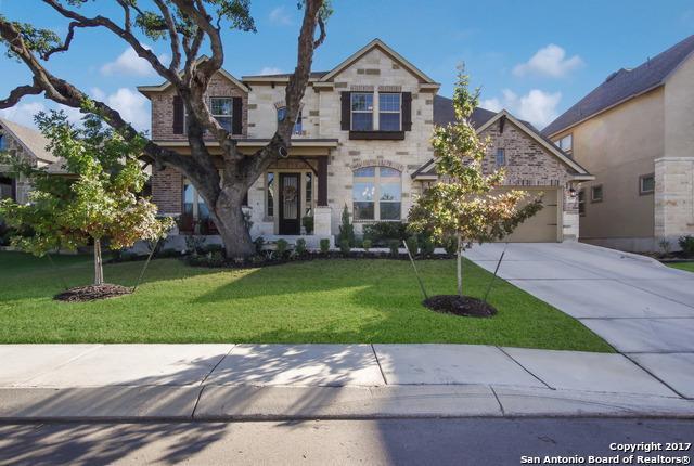 18718 Wild Onion, San Antonio, TX 78258 (MLS #1282953) :: ForSaleSanAntonioHomes.com