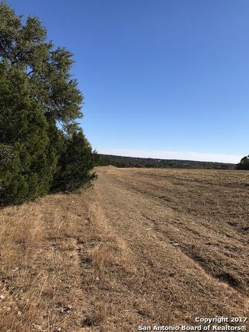101 Saddle Mountain Dr, Boerne, TX 78006 (MLS #1283175) :: Magnolia Realty