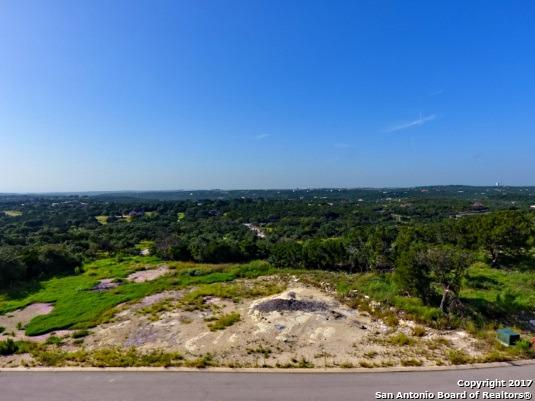 3923 Smithson Ridge, San Antonio, TX 78261 (MLS #1283278) :: The Castillo Group