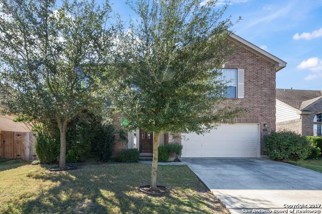 24315 Alamosa Fls, San Antonio, TX 78255 (MLS #1283558) :: Tami Price Properties, Inc.