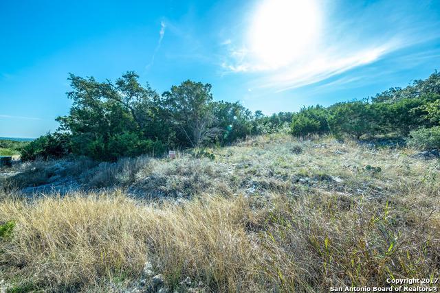 8222 Storm Cir, San Antonio, TX 78266 (MLS #1283618) :: Magnolia Realty
