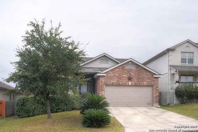 454 Tiger Hls, San Antonio, TX 78251 (MLS #1283772) :: Tami Price Properties, Inc.