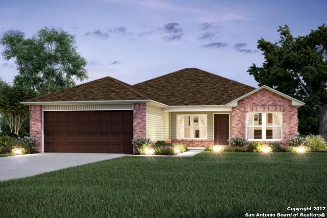 322 Franchi Way, New Braunfels, TX 78130 (MLS #1283786) :: Neal & Neal Team