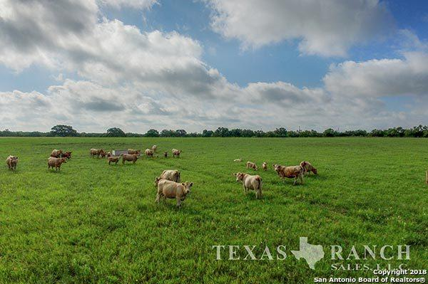 1450 County Road 732, Yancey, TX 78886 (MLS #1285525) :: Ultimate Real Estate Services