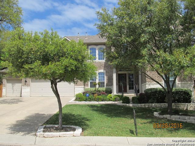 125 Yaupon Trl, San Antonio, TX 78256 (MLS #1285739) :: Carolina Garcia Real Estate Group