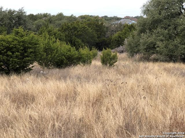 2641 Beaver Ln, New Braunfels, TX 78132 (MLS #1286024) :: Magnolia Realty