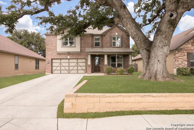 13039 Geyser Peak, San Antonio, TX 78253 (MLS #1286450) :: The Castillo Group