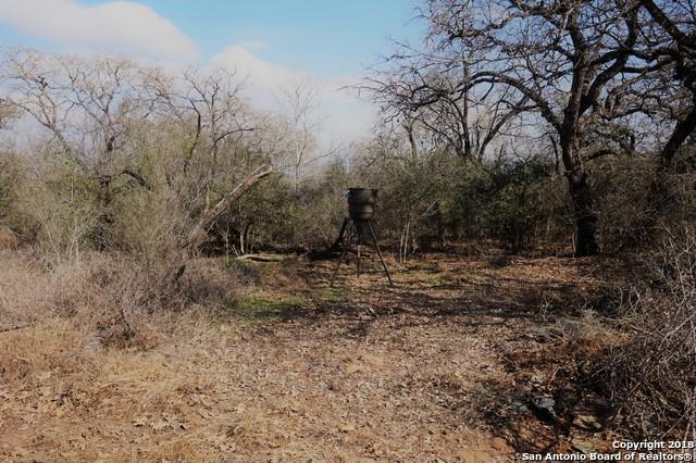 0 Patton Rd, Somerset, TX 78069 (MLS #1286613) :: Erin Caraway Group