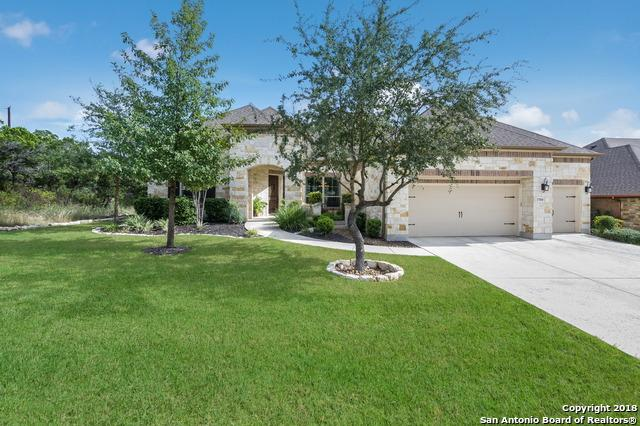 17010 Sunridge Pt, Helotes, TX 78023 (MLS #1287104) :: The Castillo Group