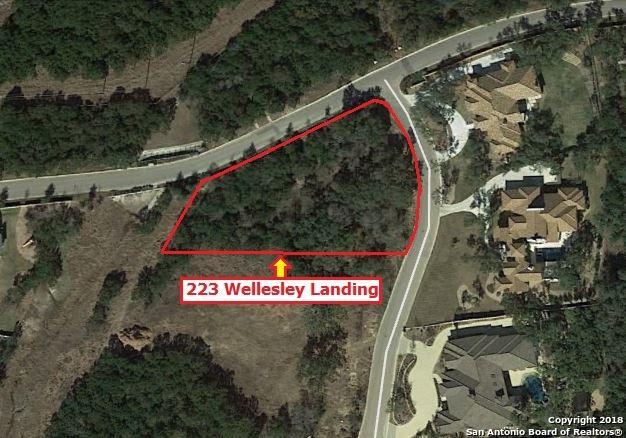223 Wellesley Landing, San Antonio, TX 78231 (MLS #1287539) :: ForSaleSanAntonioHomes.com