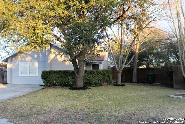5526 Indian Peak St, San Antonio, TX 78247 (MLS #1287554) :: Exquisite Properties, LLC