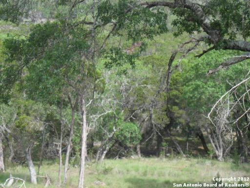 2553 George Pass, Canyon Lake, TX 78133 (MLS #1287605) :: Magnolia Realty