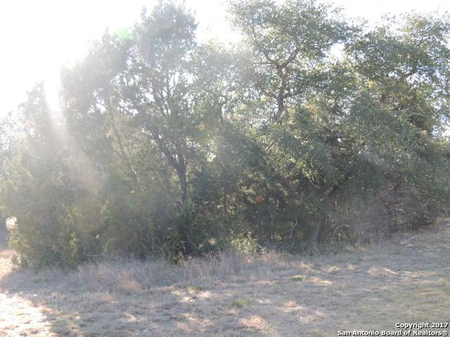 113 San Felipe, Canyon Lake, TX 78133 (MLS #1287612) :: Exquisite Properties, LLC