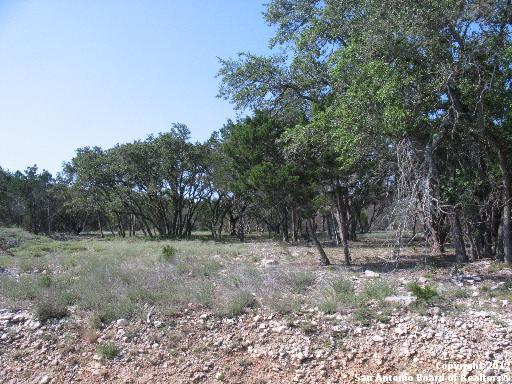 512 Cielo Vis, Canyon Lake, TX 78133 (MLS #1287625) :: Ultimate Real Estate Services