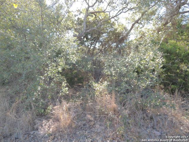418 Cielo Vis, Canyon Lake, TX 78133 (MLS #1287628) :: Exquisite Properties, LLC