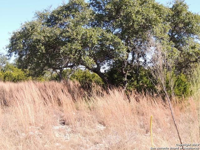 1214 Ensenada Dr, Canyon Lake, TX 78133 (MLS #1287630) :: Ultimate Real Estate Services