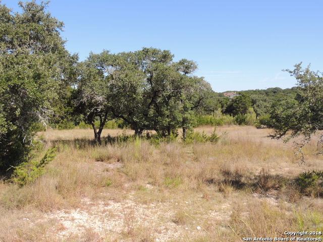 1837 Split Mtn, Canyon Lake, TX 78133 (MLS #1287633) :: Ultimate Real Estate Services
