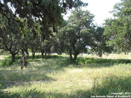 113 San Salvadore, Canyon Lake, TX 78133 (MLS #1287635) :: Ultimate Real Estate Services
