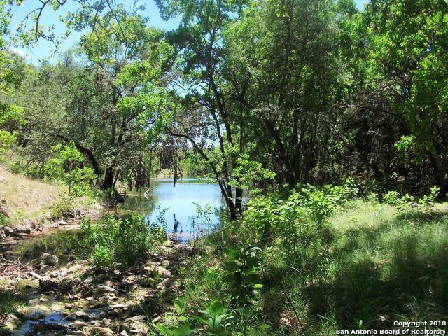 1406 Canyon Lake Dr, Canyon Lake, TX 78133 (MLS #1287636) :: Berkshire Hathaway HomeServices Don Johnson, REALTORS®