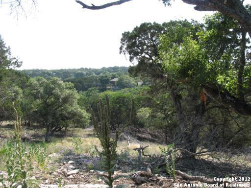 1466 Paradise Dr, Canyon Lake, TX 78133 (MLS #1287647) :: Ultimate Real Estate Services