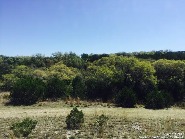 2242 (LOT 1099) Meritage, New Braunfels, TX 78132 (MLS #1287652) :: Ultimate Real Estate Services