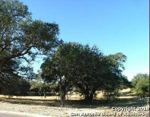 42 Vintage Trce, San Antonio, TX 78257 (MLS #1287790) :: Carolina Garcia Real Estate Group