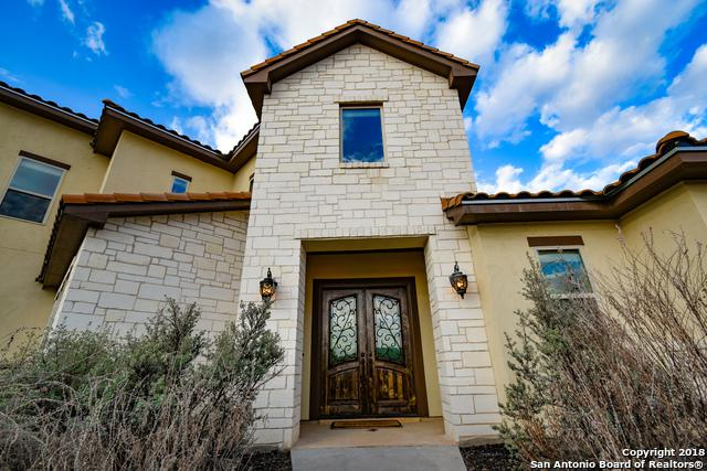 10319 Teich Loop, New Braunfels, TX 78132 (MLS #1287890) :: Exquisite Properties, LLC