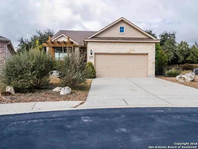 12770 Cascade Hls, San Antonio, TX 78253 (MLS #1288271) :: The Castillo Group