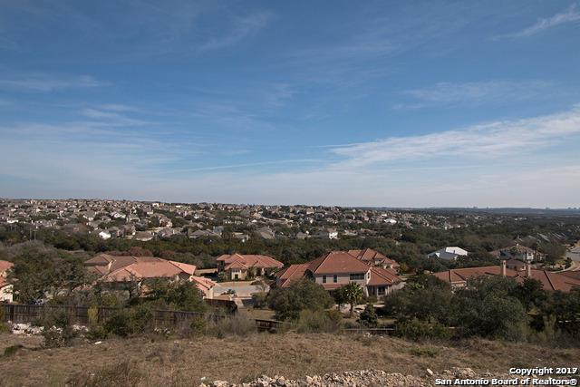 316 Tulorosa Ridge, Helotes, TX 78023 (MLS #1288322) :: Carolina Garcia Real Estate Group