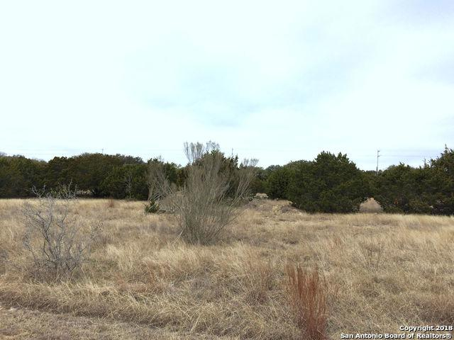 1403 Ensenada Dr, Canyon Lake, TX 78133 (MLS #1288638) :: Magnolia Realty