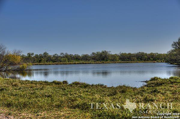000 Cr 4006, Crystal City, TX 78839 (MLS #1288937) :: Neal & Neal Team